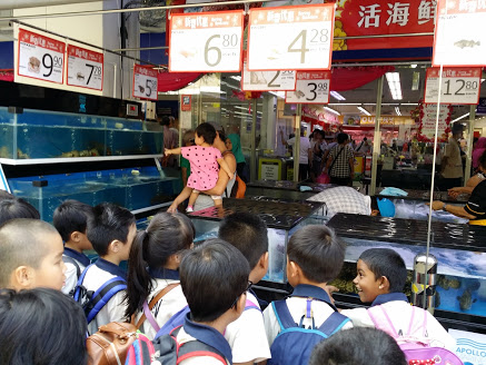 Walk around the Bedok Town Centre - Sale of live seafood.jpg